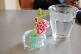 テーブルの上のカップの写真・画像素材[1549185]