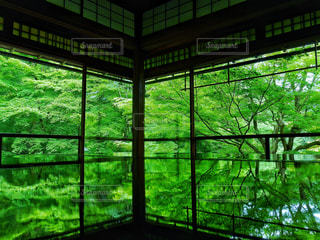 大きな窓の景色の写真・画像素材[958684]