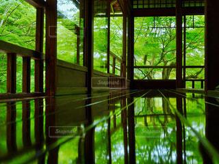大きな窓の景色の写真・画像素材[958694]