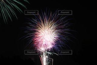 空の花火の写真・画像素材[2332407]
