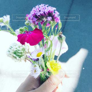 野花を摘んで花束にしたの写真・画像素材[948342]