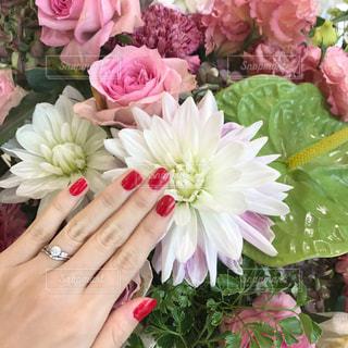赤いネイルとピンクの花束の写真・画像素材[960370]