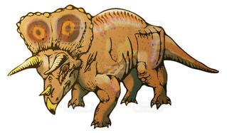 トリケラトプスの写真・画像素材[948607]