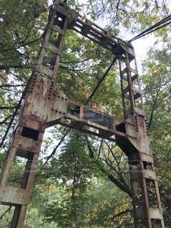 橋桁の写真・画像素材[948615]