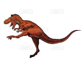 ティラノサウルスの写真・画像素材[948659]