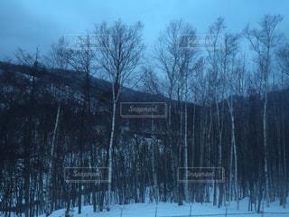 雪山の写真・画像素材[949649]