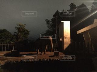 橋に沈む夕日 - No.950422
