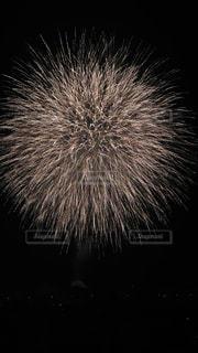 空に花火の写真・画像素材[949719]