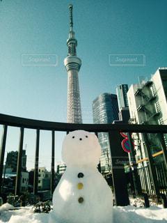 スカイツリーと雪だるまの写真・画像素材[949526]