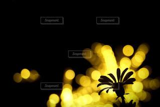 花のシルエットの写真・画像素材[958258]