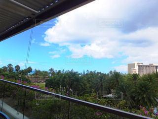 ハワイのトランプタワーからの景色の写真・画像素材[950402]