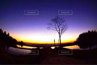 日没の前にトラフィック ライト - No.952126