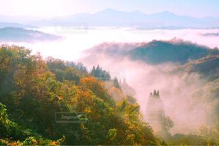 背景の山と木の写真・画像素材[952161]