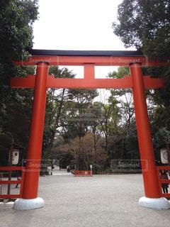世界遺産 京都/下鴨神社3の写真・画像素材[950721]