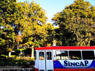 トルコの街並みの写真・画像素材[951275]