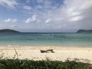 イダの浜の写真・画像素材[951125]