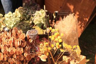 花のアップの写真・画像素材[951283]