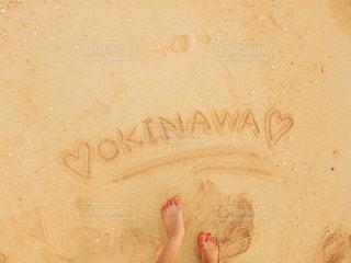 summerの写真・画像素材[951878]