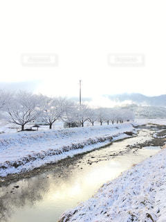 雪景色の写真・画像素材[951598]