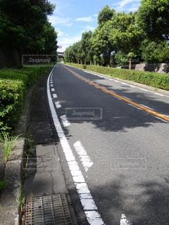 続く坂道の写真・画像素材[1488799]