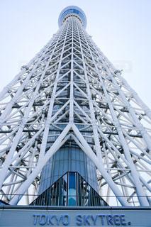 東京スカイツリーの写真・画像素材[955544]