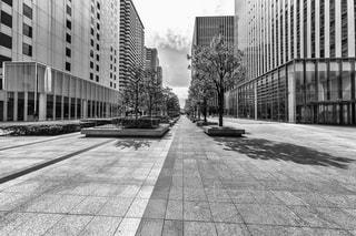 通りの黒と白の写真の写真・画像素材[955550]