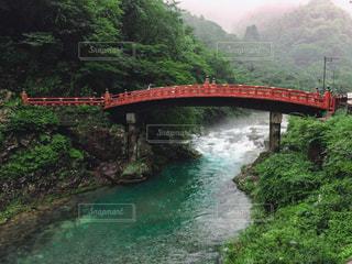 森の中の川に架かる橋の写真・画像素材[1033740]