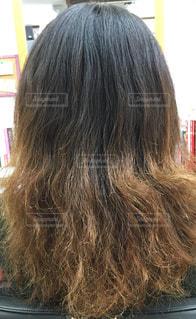 ハイダメージ毛の写真・画像素材[952290]