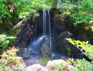 森の中の大きな滝の写真・画像素材[952915]