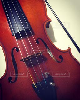 バイオリンの写真・画像素材[962672]