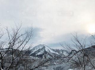 雪に覆われた山の写真・画像素材[953399]