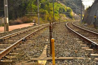 線路の上の写真・画像素材[954260]