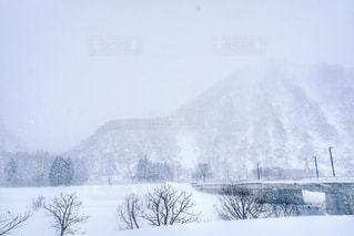 雪景色の写真・画像素材[957040]
