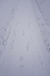 雪と足跡 - No.964139