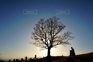 ある日の夕方 - No.1020899