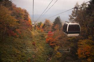 下り列車を走行する列車は森の近く追跡します。の写真・画像素材[971446]