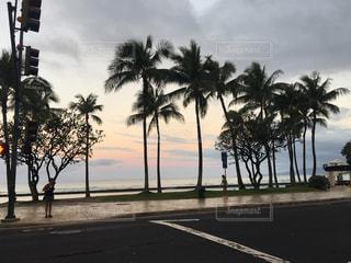 Hawaii's beautiful morningの写真・画像素材[954691]