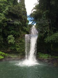森の中の大きな滝の写真・画像素材[954775]