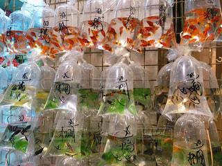 香港、ナイトマーケット金魚街にて - No.955183