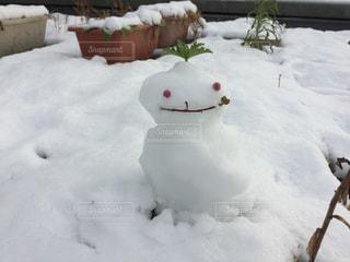 雪の山の写真・画像素材[956002]