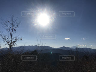 高尾山の写真・画像素材[956702]