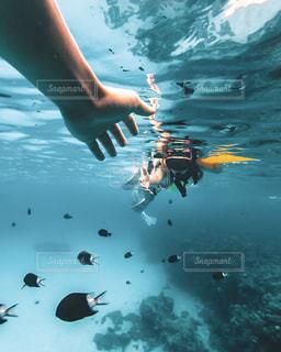 水の中を泳いでいる人の写真・画像素材[2321202]