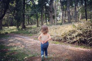 森林の隣に立っている女の子 - No.1099986