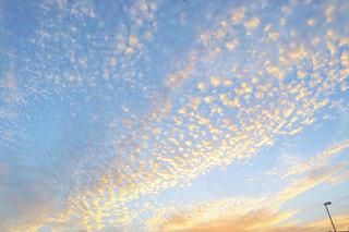 秋の空に見れるうろこ雲の写真・画像素材[1493363]