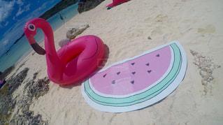 ビーチで水のペットボトルの写真・画像素材[956731]