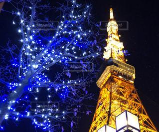 東京タワーの写真・画像素材[961128]