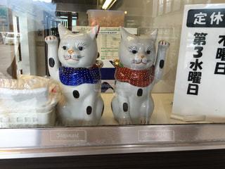 変わった招き猫の写真・画像素材[974320]