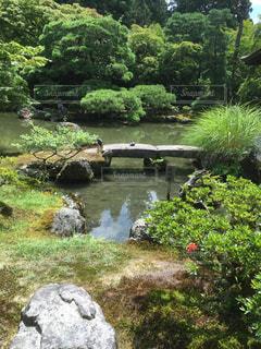 庭園の写真・画像素材[995858]