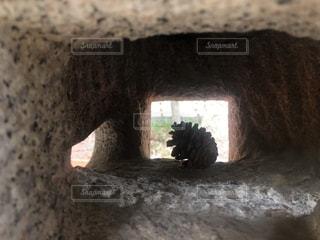灯籠の中のまつぼっくりの写真・画像素材[2206497]