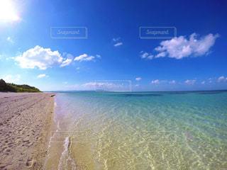 12月の美しいコンドイビーチの写真・画像素材[959499]